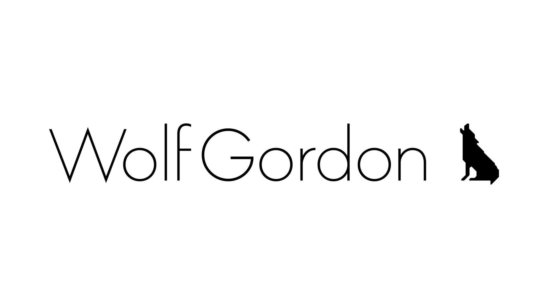 wolf-gordon identity